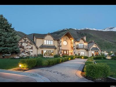 Mapleton Single Family Home For Sale: 903 S 1300 E