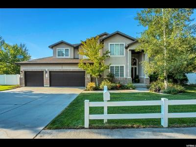 Salt Lake County Single Family Home For Sale: 881 Tripp Ln
