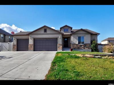 West Valley City Single Family Home For Sale: 4528 S Haven Ridge Way W
