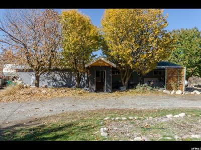 Cache County Single Family Home For Sale: 13011 N High Creek Road Rd