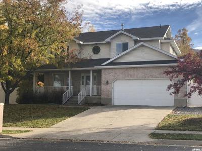 Hyde Park Single Family Home For Sale: 506 N 350 E