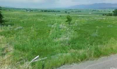 Wellsville Residential Lots & Land For Sale: 5535 W 3400 S