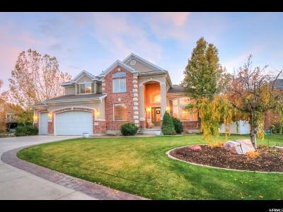 South Jordan Single Family Home For Sale: 1253 W Chapel Ridge Dr