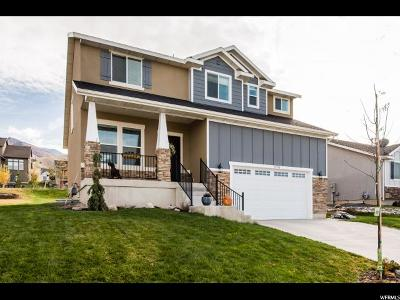 Smithfield Single Family Home For Sale: 578 S 1030 E