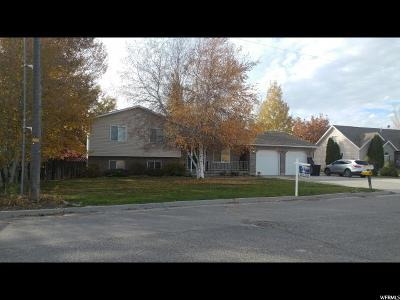 Wellsville Single Family Home For Sale: 1287 N State St