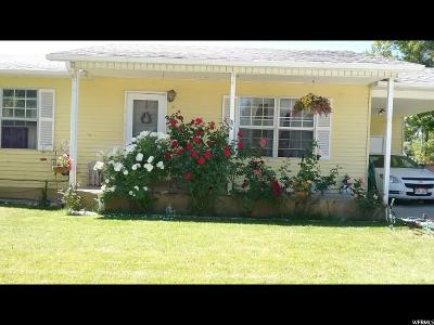 Castle Dale Single Family Home For Sale: 20 E 970 N