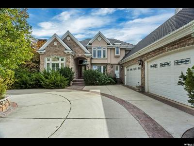 Sandy Single Family Home For Sale: 8705 S Willow Green Cir