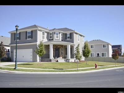 Eagle Mountain Single Family Home For Sale: 4899 E Sage Brush Ln #1031