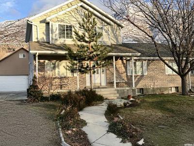 Draper Single Family Home For Sale: 12297 S 1840 E