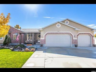 West Jordan Single Family Home For Sale: 5117 W 8180 S