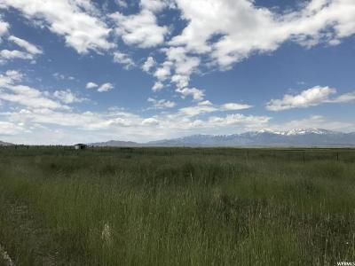 Tooele County Residential Lots & Land For Sale: 3263 N Highway 36