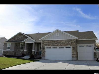 South Jordan Single Family Home For Sale: 10028 S 3200 W