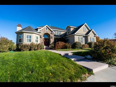 Eagle Mountain Single Family Home For Sale: 1791 Sunset View Ln