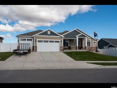Herriman Single Family Home For Sale: 7242 W Sunset Skies Dr S