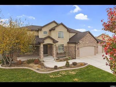 Eagle Mountain Single Family Home For Sale: 3986 Mount Airey Dr
