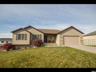 Smithfield Single Family Home For Sale: 535 N 600 E