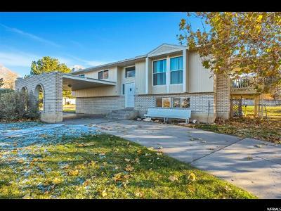 Salem Single Family Home For Sale: 640 S 240 E