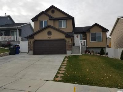 West Valley City Single Family Home For Sale: 4604 Autumn Vistas Dr