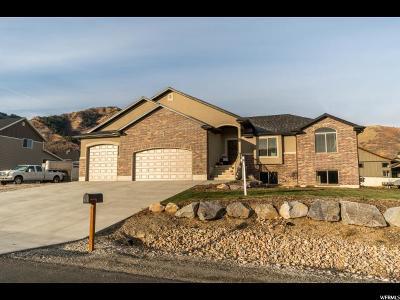 Mantua Single Family Home For Sale: 622 S 100 E