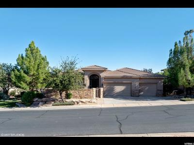 St. George Single Family Home For Sale: 1719 S View Point Drive