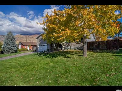 Orem Single Family Home For Sale: 1976 N 85 W