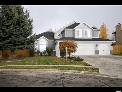 Sandy Single Family Home For Sale: 9915 Summit View Dr