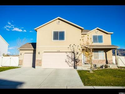Eagle Mountain Single Family Home For Sale: 3778 N Oldsalty Way E