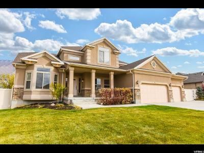 West Jordan Single Family Home For Sale: 8263 S Maple Water Dr