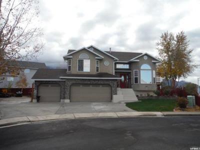 Orem Single Family Home For Sale: 1934 N 60 E