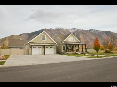 Mapleton Single Family Home For Sale: 783 S 300 W