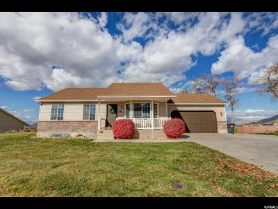Santaquin Single Family Home For Sale: 643 E 130 S