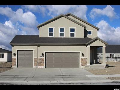 Eagle Mountain Single Family Home For Sale: 4841 N Goosefoot Dr W
