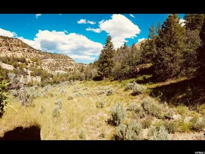 Carbon County, Emery County Residential Lots & Land For Sale: 6000 W Spring Canyon Rd