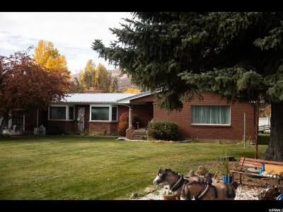 Wasatch County Single Family Home For Sale: 333 N Pine Canyon Rd W