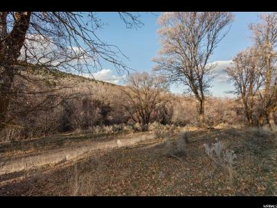 Herriman Residential Lots & Land For Sale: 15729 S Rose Cyn W