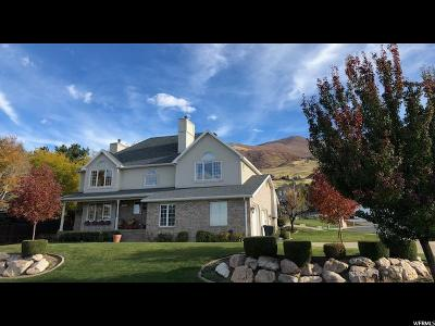 Davis County Single Family Home For Sale: 1566 N Cherry Blossom Dr E