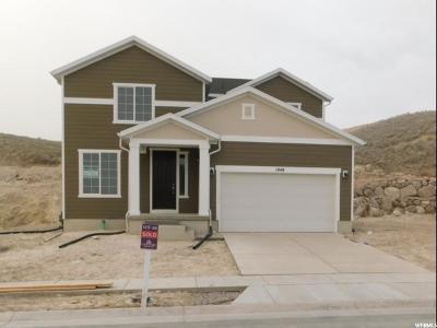 Eagle Mountain Single Family Home For Sale: 1848 E Riva Ridge Rd #420