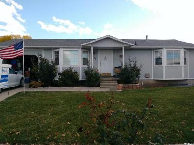 Tooele Single Family Home For Sale: 789 W Timpie Rd S
