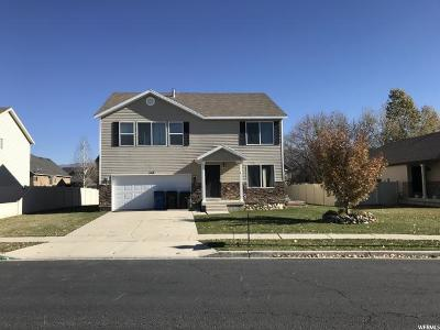 Spanish Fork Single Family Home For Sale: 567 S 800 W