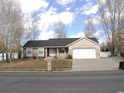 Wasatch County Single Family Home For Sale: 911 E 450 N