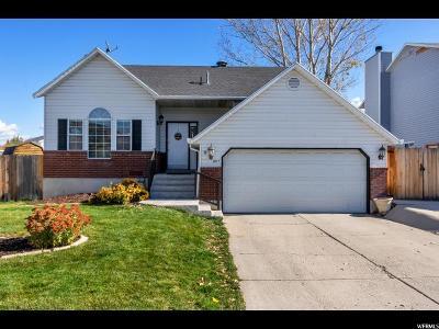 Murray Single Family Home For Sale: 6177 S Raton Ln