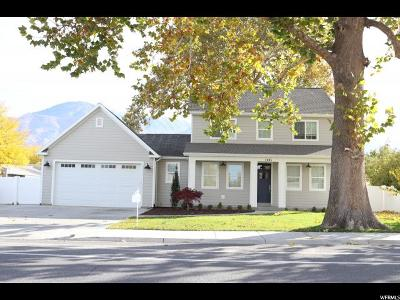Provo Single Family Home For Sale: 1095 S 1100 W