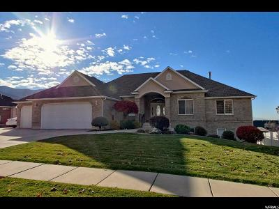 Weber County Single Family Home For Sale: 841 E 3400 N
