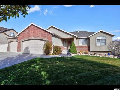 West Jordan Single Family Home For Sale: 8077 S Box Canyon Rd