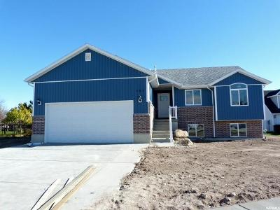 Tremonton Single Family Home For Sale: 161 S 760 W