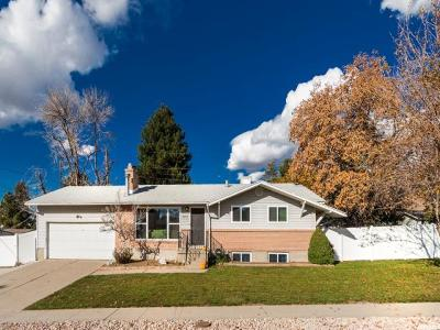 Cottonwood Heights Single Family Home For Sale: 2507 E Country Ave