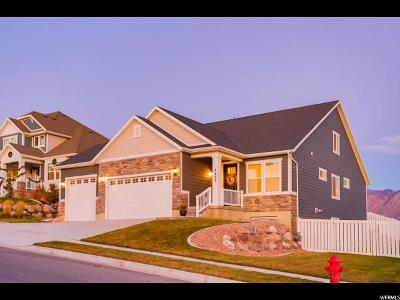 Lehi Single Family Home For Sale: 4096 N 400 W