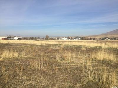 Tooele County Residential Lots & Land For Sale: 1451 E Arrowhead Ln N