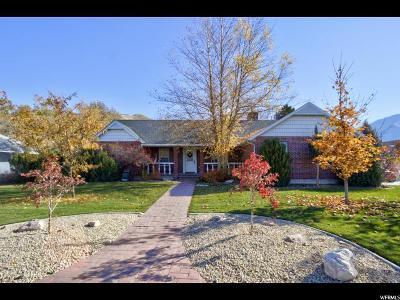 Springville Single Family Home For Sale: 749 S 1800 E