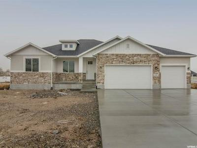Single Family Home For Sale: 1491 E Owens Cv N #115